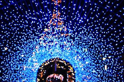 お一人様クリスマスの過ごし方